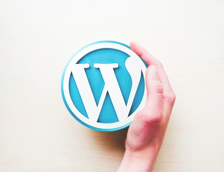 why-you-choose-wordpress-if-you-are-beginner's